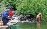 Fishing trip and mama grizzly