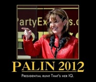 Palin 2012 Tea Party Express - IQ