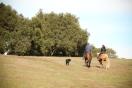 Back view of Sarah and other rider at Reagan Ranch