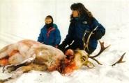 Sarah and daughter and moose