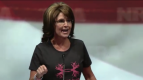 Closeup of Sarah pointing during 2013 NRA speech