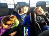 Trig and Tripp asleep in back seat of car